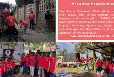 My Festival My Responsibility